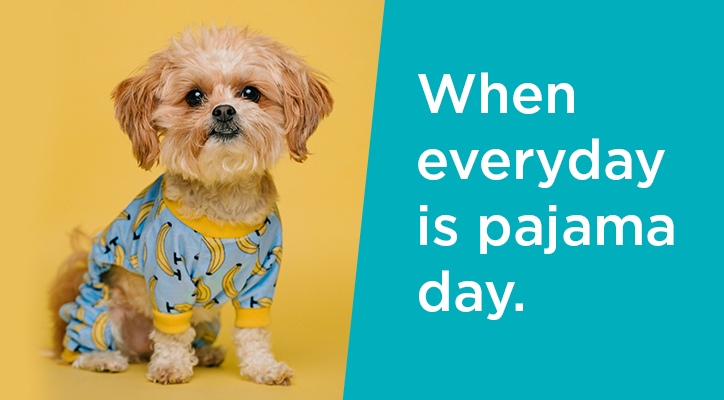 """a puppy in pajamas with the caption """"when everyday is pajama day"""""""